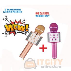 2Pcs WS 858 Wireless Bluetooth Karaoke Microphone HIFi Speaker